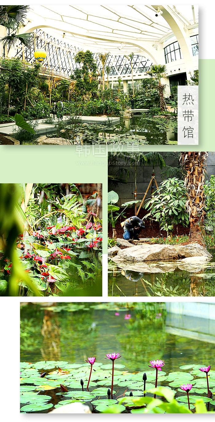 [首尔/景点] 寒冷与微尘的担心 NO ! 草绿的首尔治愈名所 – 首尔植物园
