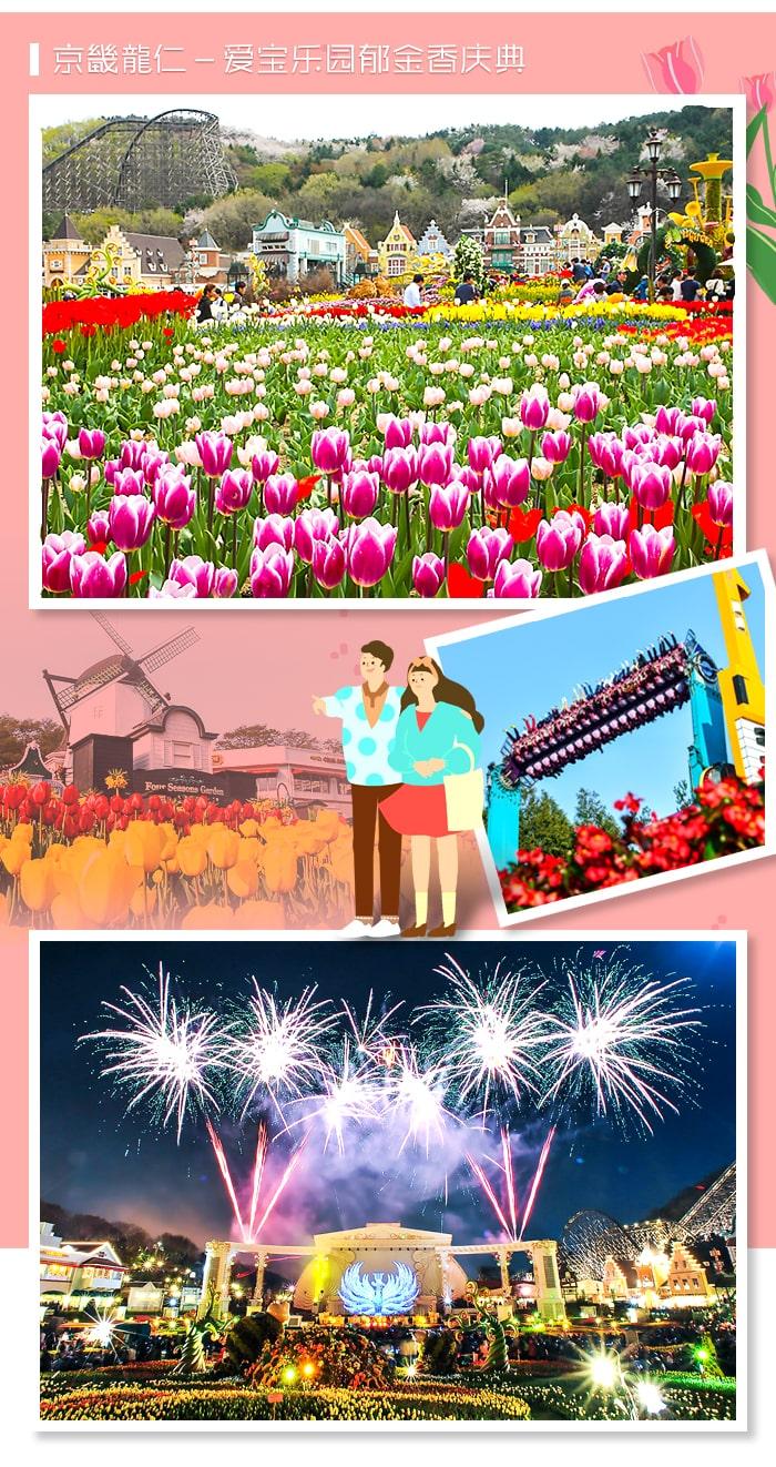 [主题频道/庆典] 抓紧初春美好的2019年韩国春花庆典BEST 5