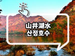 [京畿推荐日程] 抱川四季中,劇照般的人生照片之旅