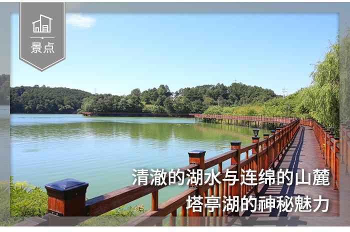 [忠清南道/景点] 清澈湖水与连绵山麓的神秘魅力 - 塔亭湖 탑정호수