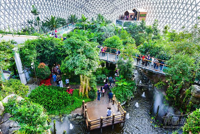 [庆尚南道巨济] 巨济丛林巨蛋(Jungle Dome)开业一个月后迅速成为代表性旅游胜地
